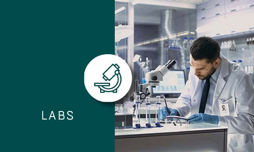 Labs with Green box and Icon